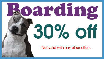 Plainfield Veterinary Clinic Coupon Plainfield IL