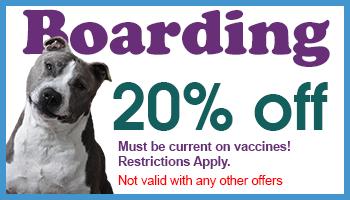 20% off Boarding