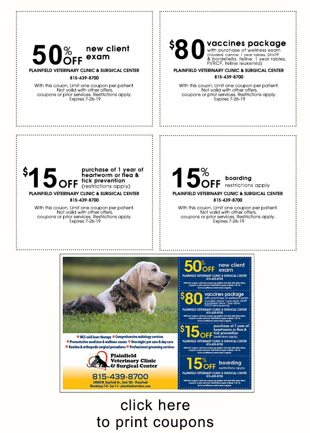 Veterinary Coupon and Specials - Free First Exam for New