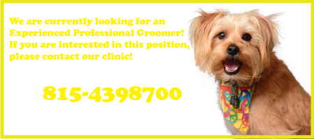 Looking for an Experienced Groomer